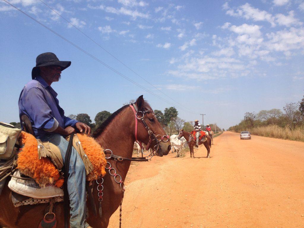 Pantanal cowboys