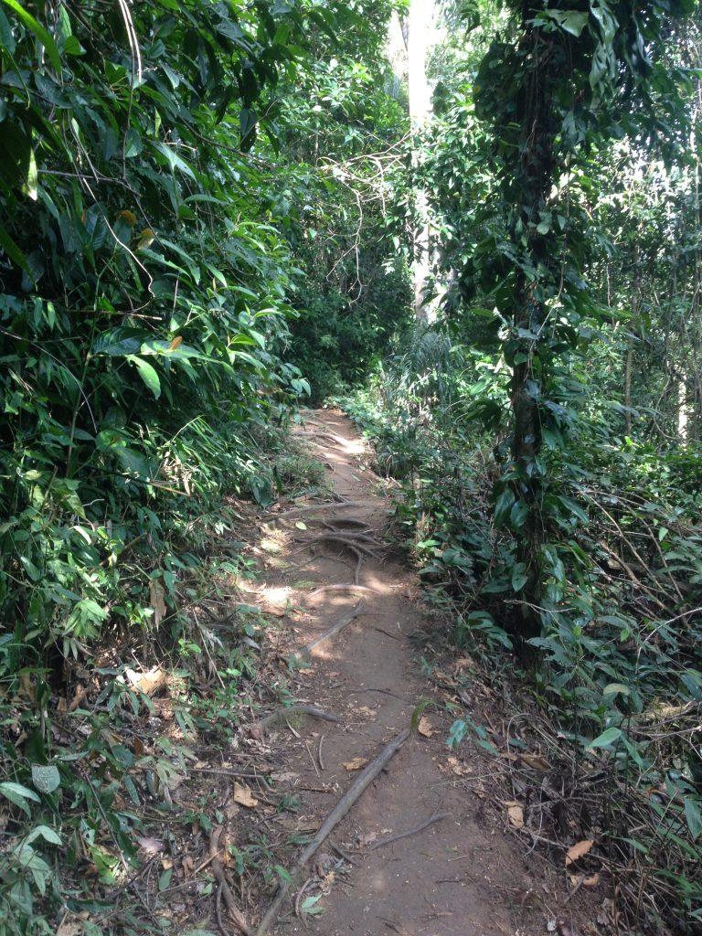 Trekking Way