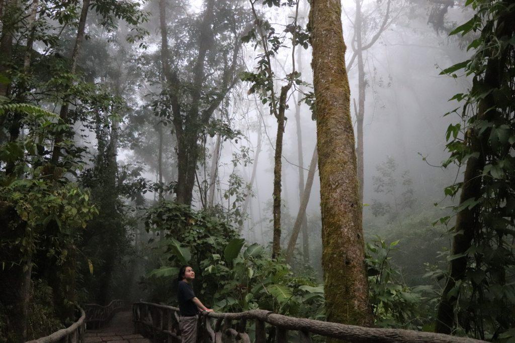 Gardens Costa Rica