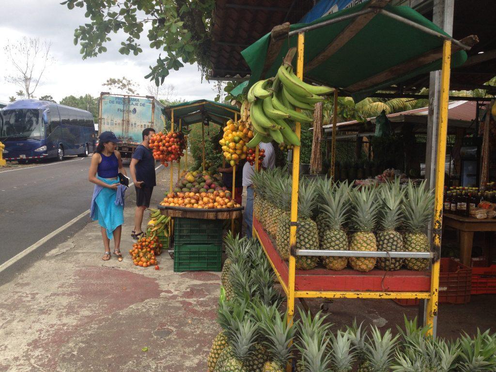 costa rica fruits