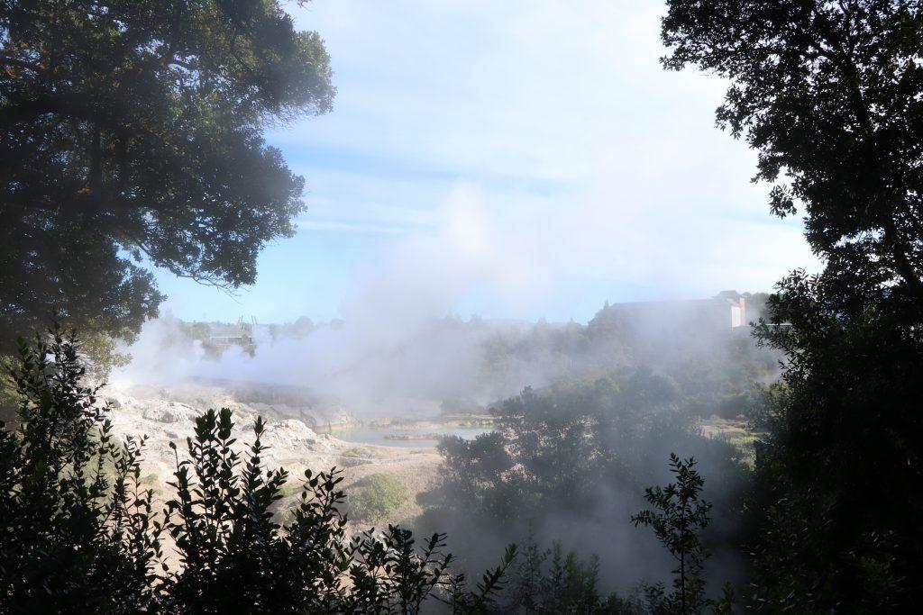 Geysers, Rotorua