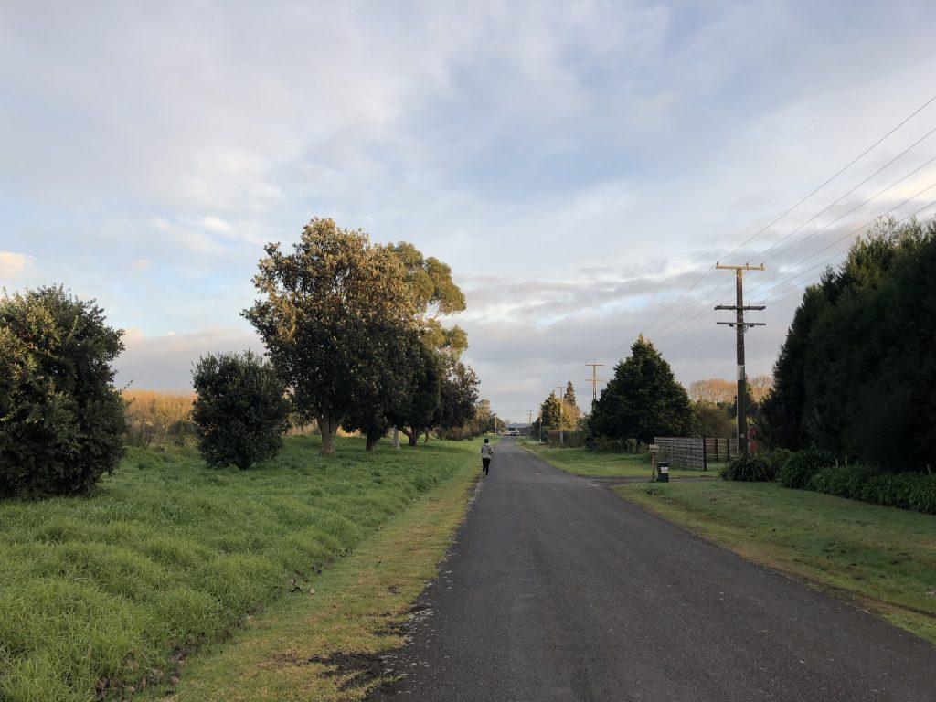 New Zealand, Tauranga
