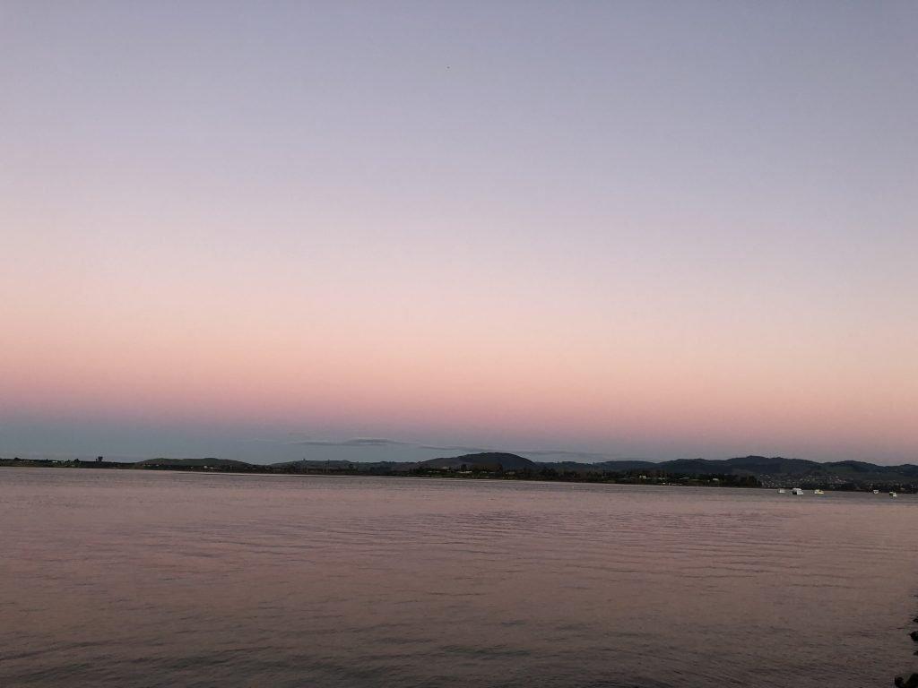 Tauranga, NZ