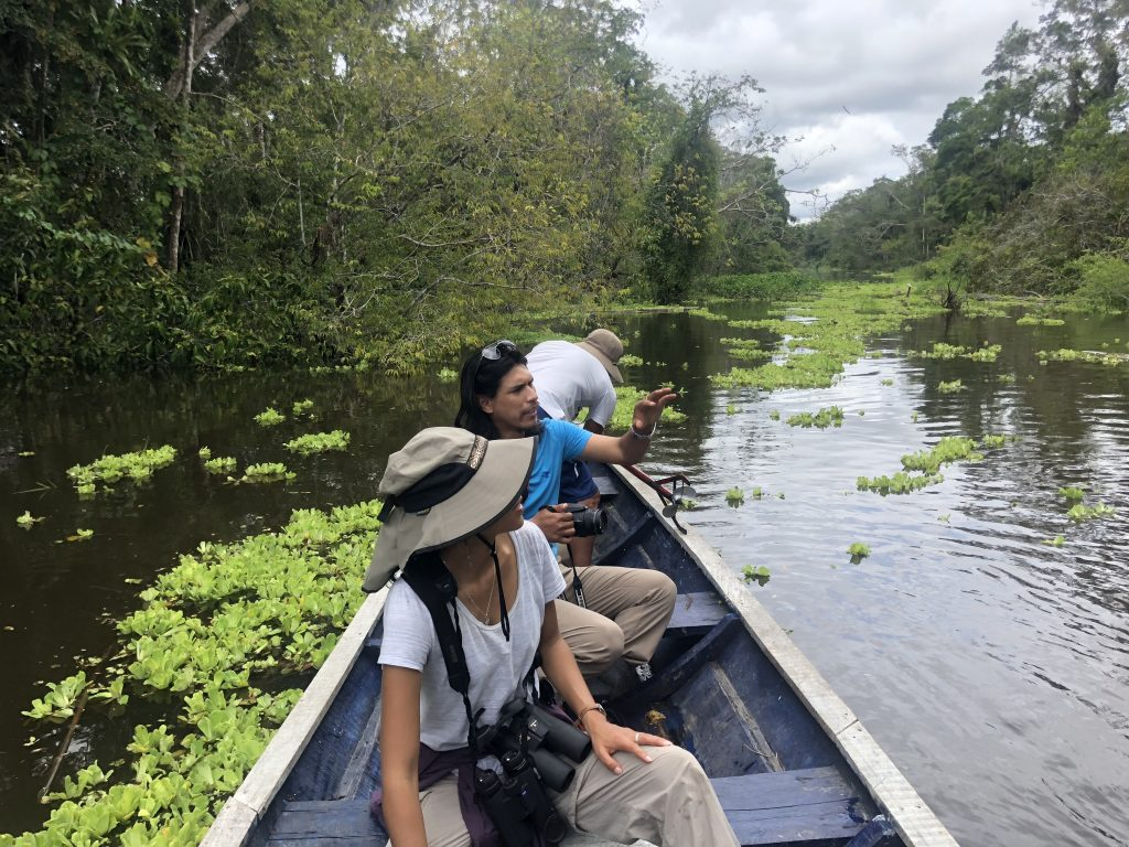 Exploring Amazonia