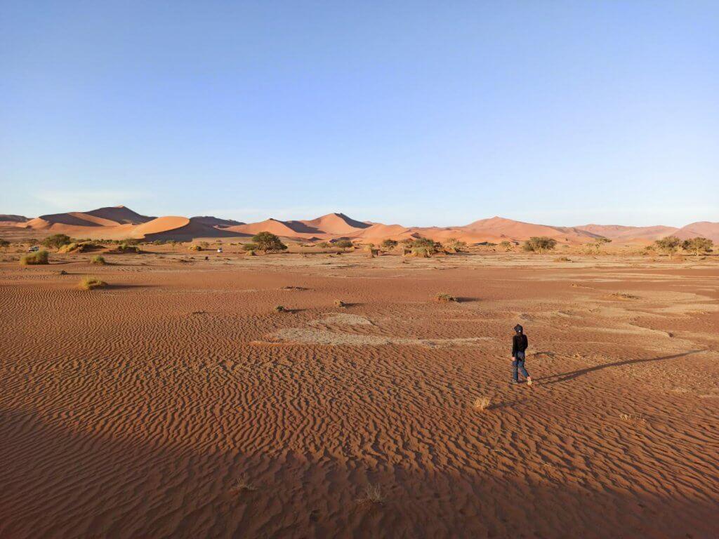 Nationalpark Namibia