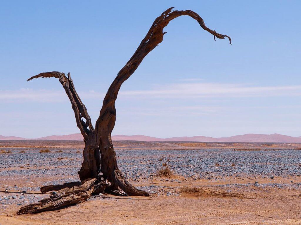 Landscape Namib Naukluft Nationalpark